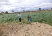 Impact of Nalabund at Pushpapura: